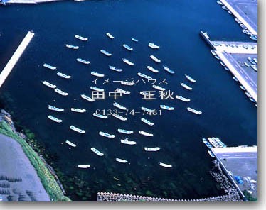 珸瑤瑁漁港 根室市